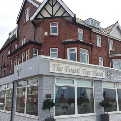 Blackpool-Hotels-The-Fossil-Tree
