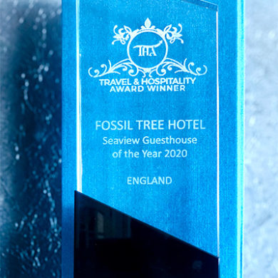 Seaview Guesthouse Of The Year 2020 in Travel & Hospitality Award Winner | The Fossil Tree Blackpool