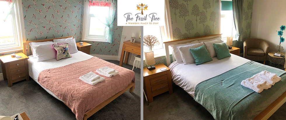 Superior King Size Beds And Twin Bedrooms | Fossil Tree Hotel Blackpool