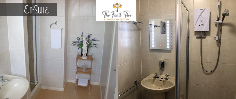 En Suite Rooms Hotel , B & B in Blackpool | The Fossil Tree Boutique B&B Hotel