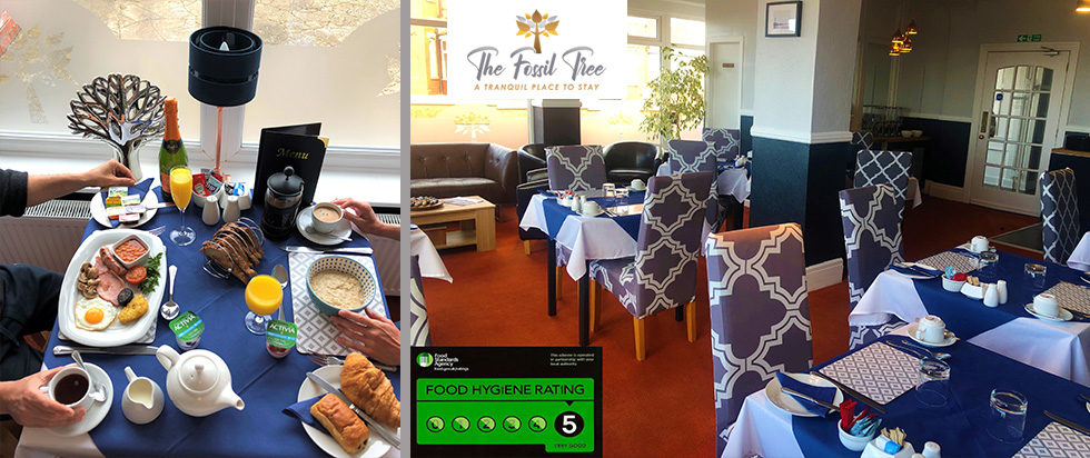 Superb Choice Of Breakfast Including Full English Breakfast | B&B Blackpool | Hotel Blackpool | The Fossil Tree Hotel