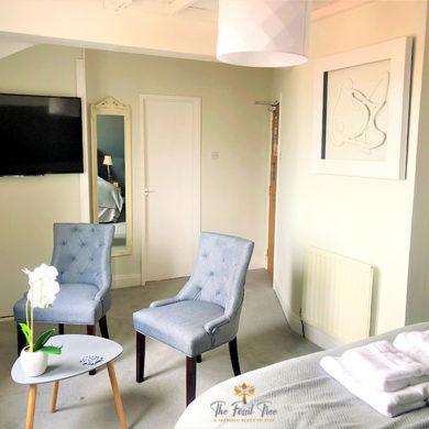 Large Room Blackpool | Guesthouse | B&B | Seaview Rooms | Blackpool Promenade | Fossil Tree