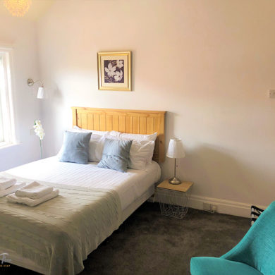 Large Room | King Size Bed | Guesthouse | B&B | Hotel Blackpool | Fossil Tree