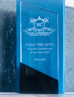 Seaview Guesthouse Of The Year 2020 Reward Fossil Tree Hotel Blackpool